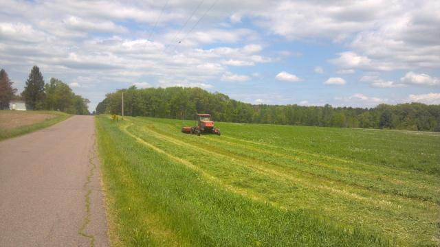 case haybine cutting alfalfa