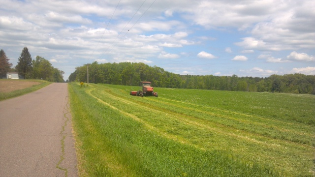 case haybine cutting alfalfa