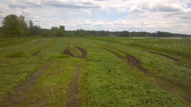 ruts in a hay field
