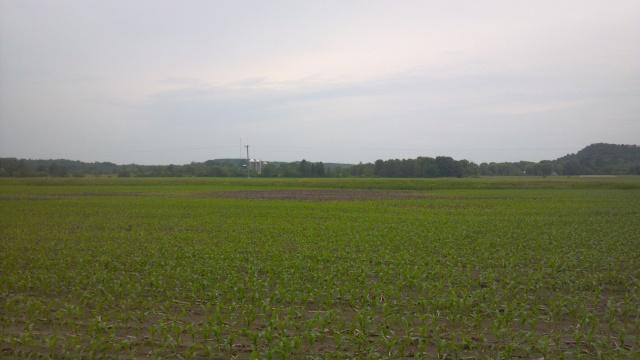 wet spot in the field