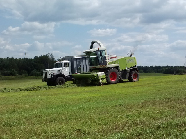claas 900 chopping into a paystar 500 truck