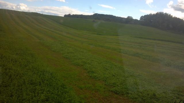 cutting alfalfa case mcdon haybine