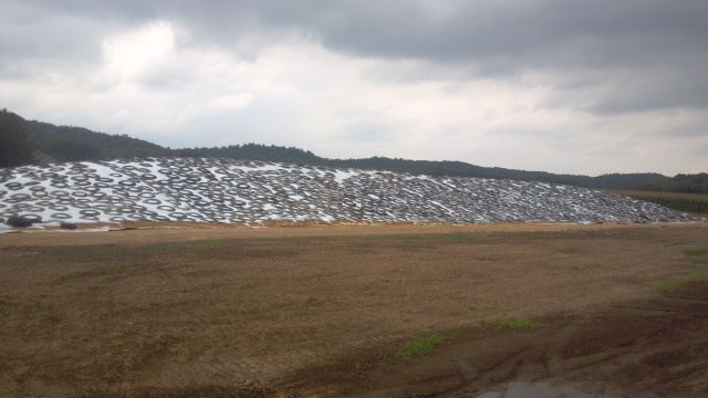 drive over silage pile