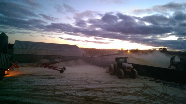 white 6215 tractor grinding corn at sunsett