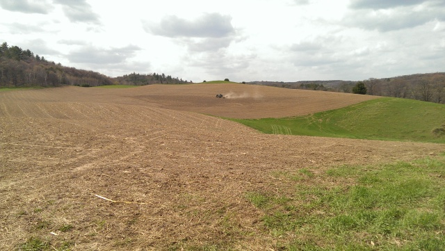 seeding alfalfa in hills