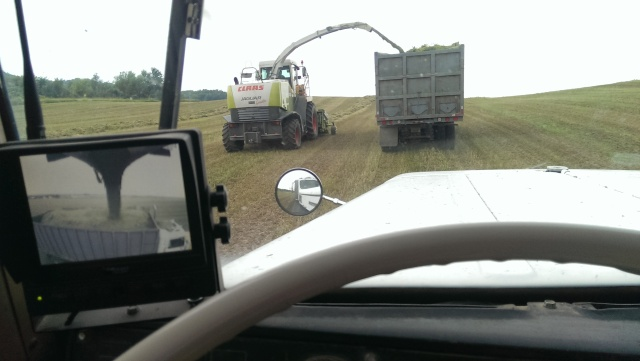chopping claas 900 into trucks cab cam