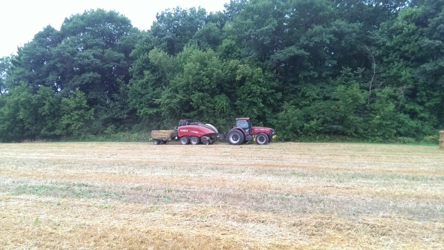 case ih baling wheat straw