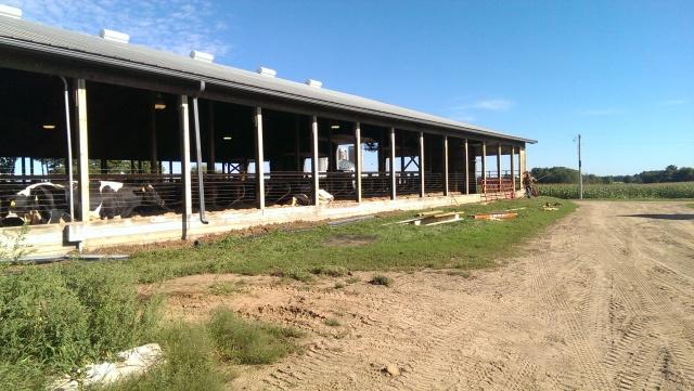 renovating a curtain sidewall free stall barn