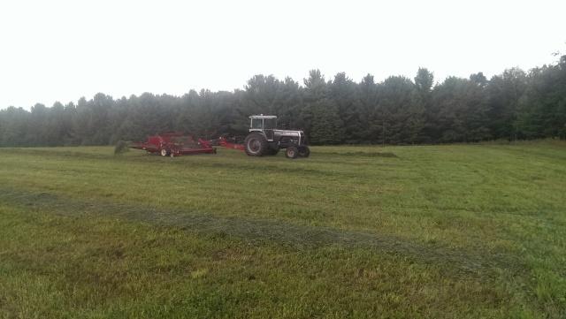 merging hay white 2-135 h&S merger