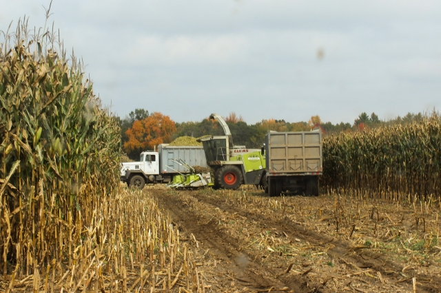 chopping corn truck switch