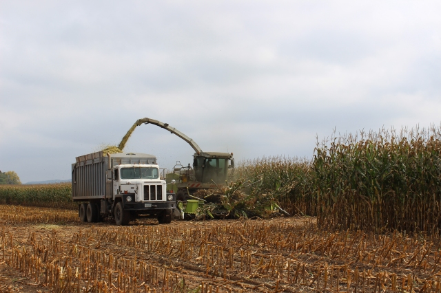 claas 900 coming out of corn
