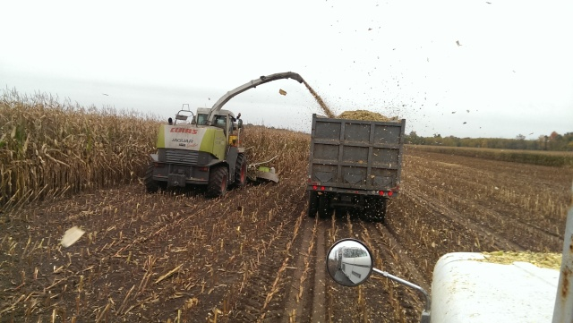 claas 900 chopping corn into truck
